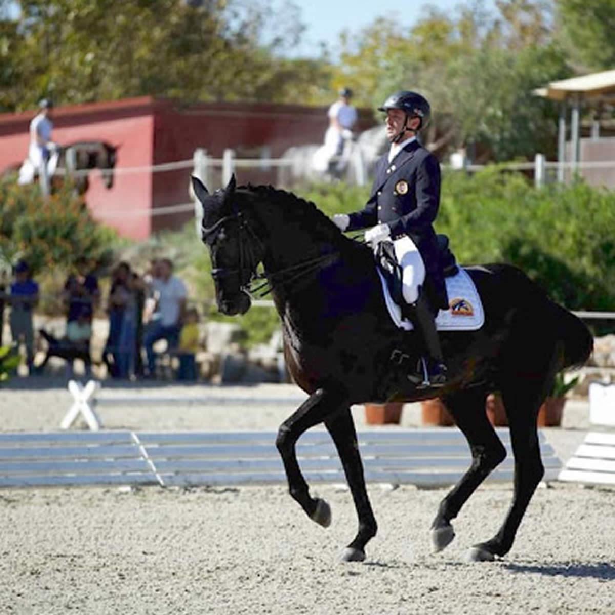 Em busca da tradição equestre portuguesa